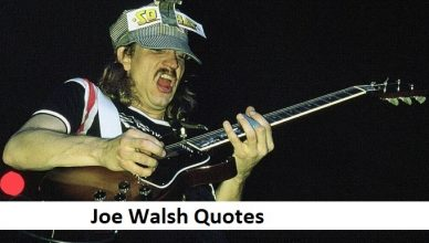Joe Walsh Quotes